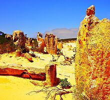 Nambung National Park by georgieboy98