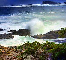 """Pacific Rim National Park-British Columbia"" by Bruce Jones"