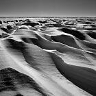Snowswept by Michael Stocks