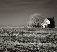 A fine house on a tolerable planet ... by PhotomasWorld
