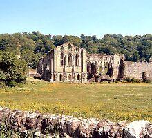 Rievaulx Abbey by sweeny