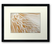 I Choose Vanilla Framed Print