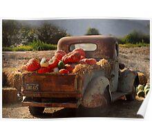 A cornacopia of trucks Poster