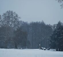 Winter in the Park by Friederike Alexander