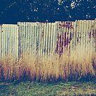 it's only a tin fence by JenniferElysse