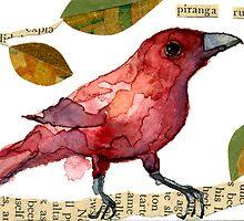 piranga rubra by Carol Kroll