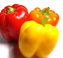 Bell Peppers by Brandon Edwards