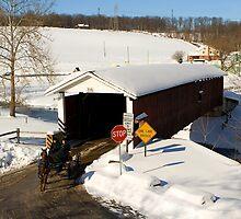 Jackson's Sawmill Covered Bridge by Mark Van Scyoc