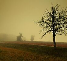 Fading world by Anton Gorlin