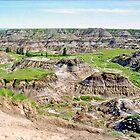 The Badlands, Drumheller, Alberta, Canada by Adrian Paul
