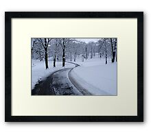 WINTER  WONDERLAND....COLD but beautiful! Framed Print