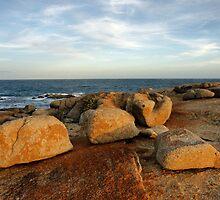 Coastal Sculptures by Harry Oldmeadow