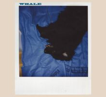 Whale_the polaroid series_Charlie by ayafilm