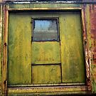 Green Train Door by Larry3
