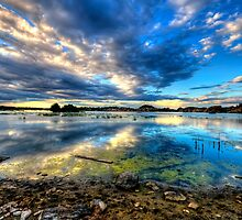 Willow Lake Reflect Blue-Second Look by Bob Larson