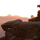 Sunset Dog-Climbing Cliffs in Tucson by Tanayri