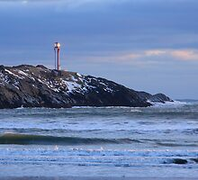Cape Forchu Lighthouse in a Blue Mood by Debbie  Roberts