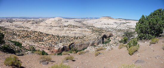 Overlooking Calf Creek  by nealbarnett