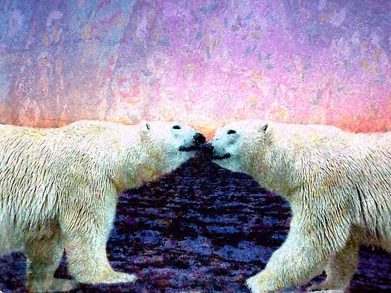 Bears by Veronica Schultz