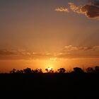 Plain Old Sunset - Port Hedland, Western Australia by Heather Linfoot