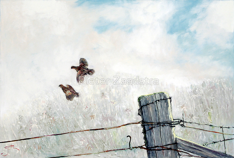 Quail Over Barbed Wire by Pieter  Zaadstra