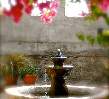 Garden fountain by Kimberly Kay Spies