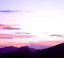 Whispers of Violet © by Vicki Ferrari