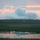 Sunrise over Fogg Dam by glenlea