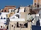 Houses in Santorini by Lucinda Walter