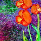 Tulipes Orange by Angela  Burman