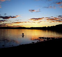 Warners Bay, Sunset with boy, 2007 by rococodreams