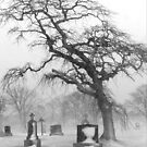 Graveyard Tree by Debbie  Roberts