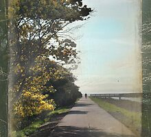 It's a Long Way by Laurie Search