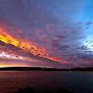 Good Morning Manly by sparrowdk