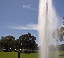 Gushing Fountain - Kings Park by Sonya Byrne