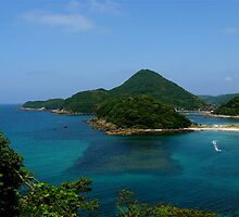 Northern coast of Honshu by panik