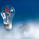 Cardinal in the Light by Trudy Wilkerson