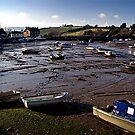 Mud Larks by Richard Hamilton-Veal