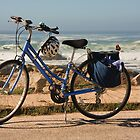 Bike at the beach by Susan Leonard