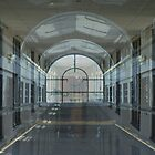 Windows in Corridors Walls Within Halls by * RoyAllenHunt *