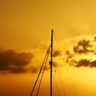 Golden Sail Sunset by Martice