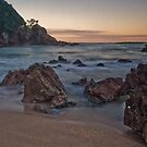 Coromandel Coast by Paul Mercer