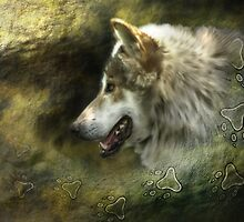 Lobo Mexicano (Mexican Gray Wolf) by Burke Higgins, Jr.