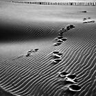 Foot Trace - Espiguette, France - 2010 by Nicolas Perriault