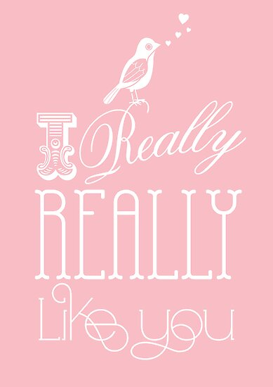 Typography: I really really like you