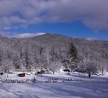 Patton Mountain Snow Scene by Karen Kaleta
