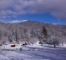 Patton Mountain Snow Scene by Karen Kaleta