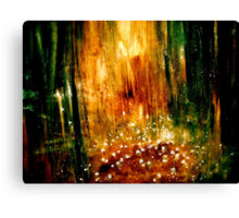 Landscape...Light in the Forest... Canvas Print