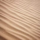 Sand Ripples by psnoonan