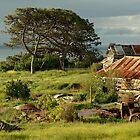 Time Capsule,Bellarine Peninsula by Joe Mortelliti
